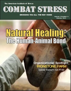 Oct. 2013Combat Stress Cover