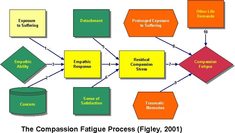 compassion fatigue the american institute of stress